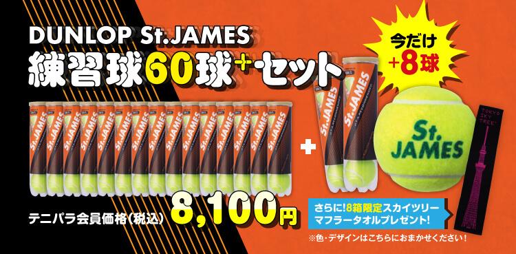 DUNLOP セント・ジェームス (St.JAMES) [練習球]